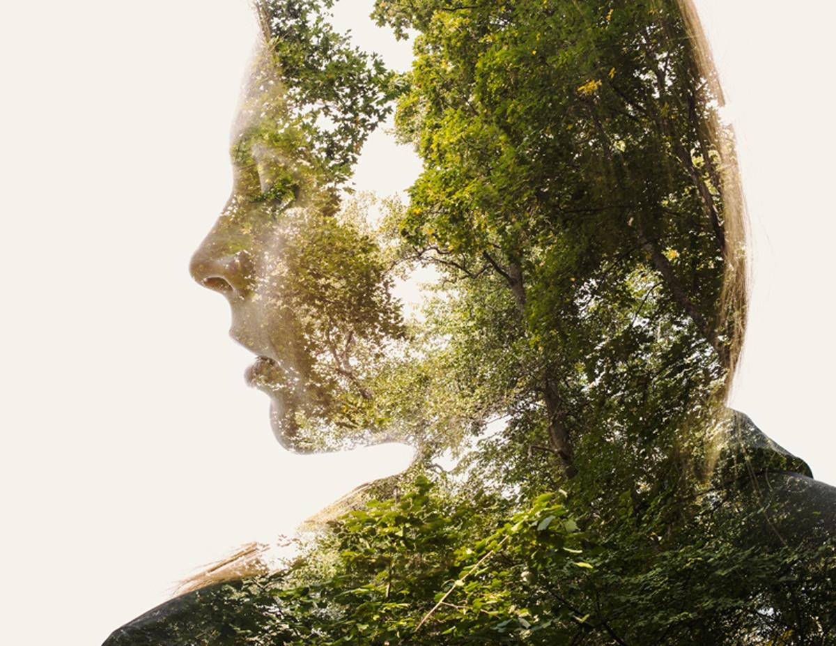 Взаимосвязь природа и человек картинки