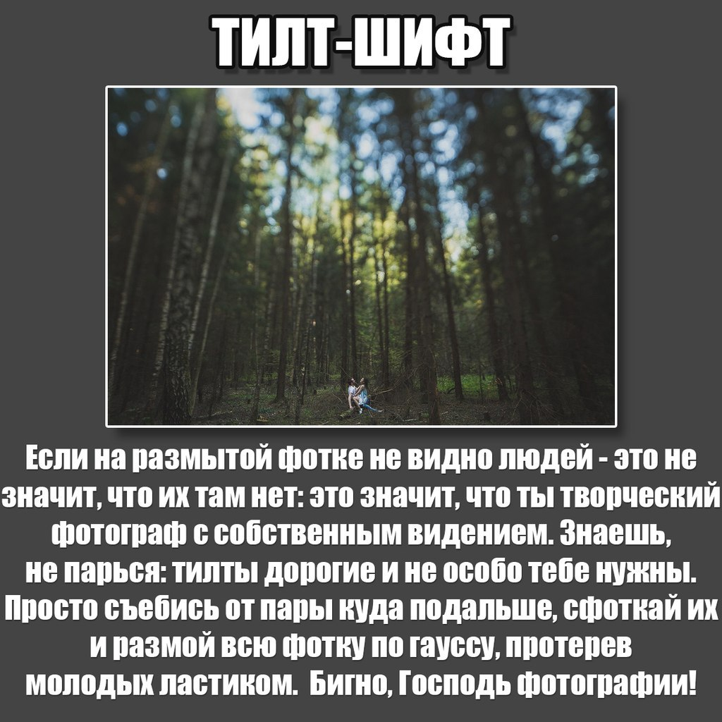 98fdc1ab6869c4d06.jpg