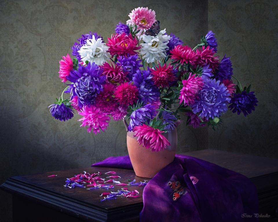 картинки цветов астры букеты веры крестным