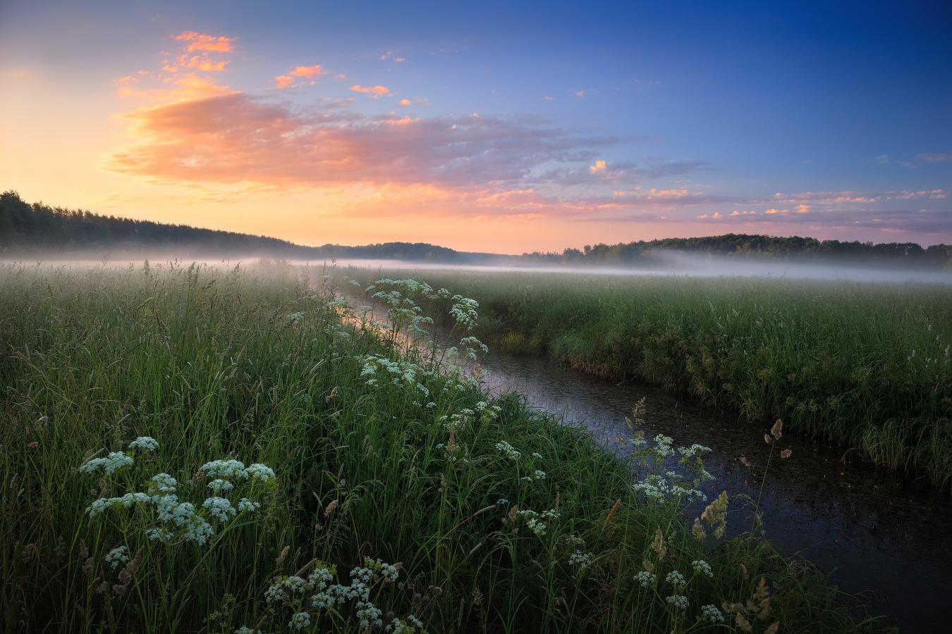 Рассвет в беларуси фото