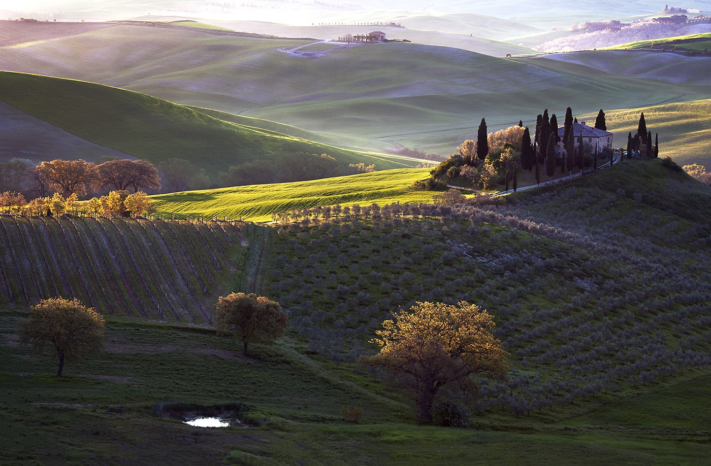 Tuscan Morning | Фотограф Danny Vangenechten | foto.by фото.бай