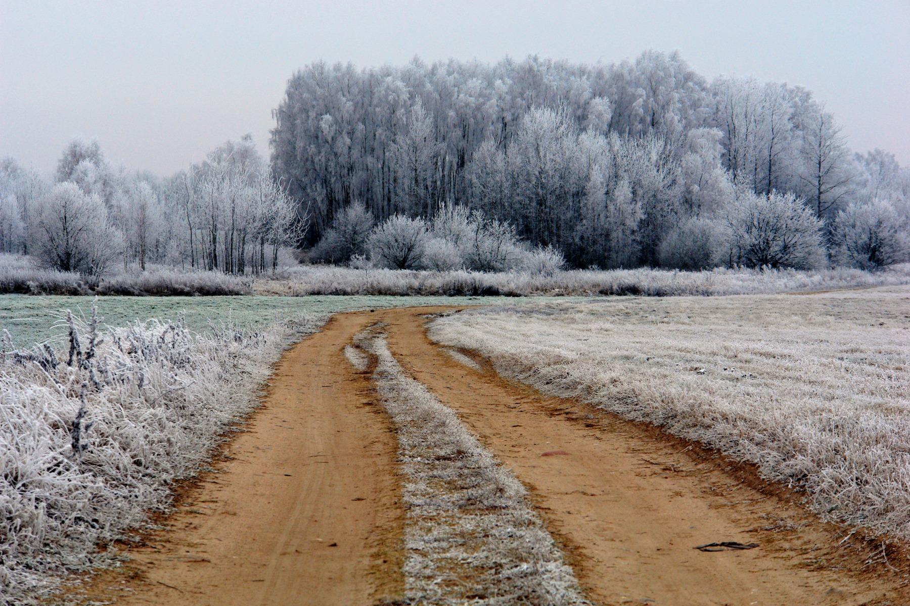 поля зимой фотографии легки транспортировке