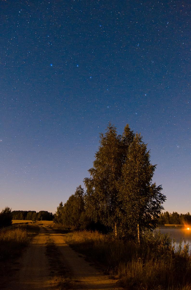 ночь в августе картинки если