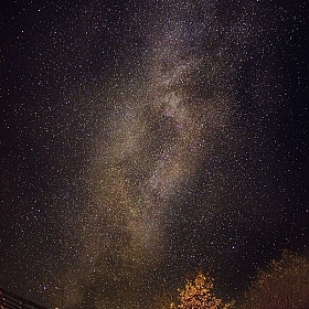 Milky Way | Фотограф Катерина Шкрабо | foto.by фото.бай