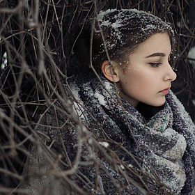 "фотограф Максим Баглаев. Фотография ""Winter shiver"""