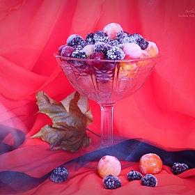 "фотограф Soboleva Svetlana. Фотография ""... taste of autumn ..."""