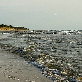"фотограф Ксения Царик. Фотография ""The Baltic Sea"""